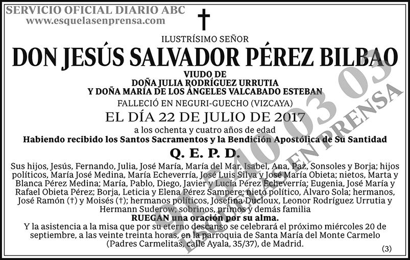 Jesús Salvador Pérez Bilbao